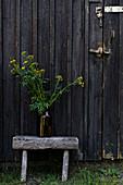 Gelb blühende Wildblumen in Vase auf rustikalem Hocker vor dunkler Holztür