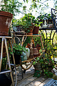 Vintage bamboo and metal plant stands decorating terrace
