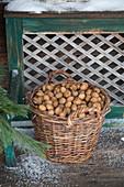 Ein Weidenkorb voller Nüsse vor rustikaler Holzbank im Freien
