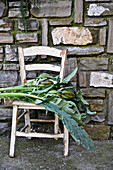 Freshly cut artichokes on old wooden chair against rustic stone wall