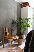 Chair with leather seat and houseplant in bedroom with grey wall