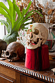 Menschliche Schädel als skurile Dekorationsobjekte auf Kommode