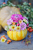 Small bouquet of chrysanthemums in a pumpkin as a vase