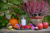 Table in garden decorated with candle lantern, heather, apples, horse chestnuts and pumpkin