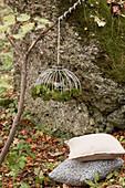 Lampenschirm mit Moos umwickelt am Ast hängend im herbstlichen Wald