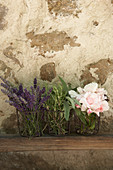 Lavender, sage, rosemary and roses in front of stone wall