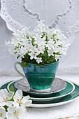 Weiße Glockenblumen in einer grünen Tasse