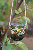 Hanging lantern with bud blooming heather