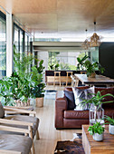 Many houseplants in open-plan interior in Urban Jungle style