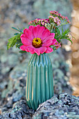 Zinnia and yarrow in turquoise vase