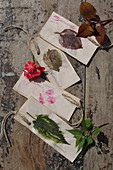Handmade bookmarks decorated with painted leaf and flower motifs