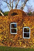 Autumn beech hedge with window (Kreislehrgarten, Steinfurt, Germany)