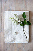 White lilac on white cushion cover