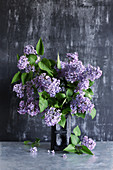 Vase of purple lilac