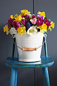 Colourful spring flowers in bucket