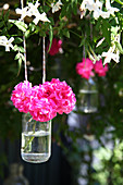 Pink flowers in jar of water hung from tree