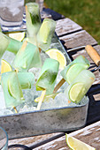 Lime ice lollies and ice cubes in metal tray in garden