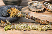 Fresh and dried herbal smudge sticks