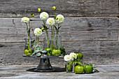 Arrangement of white pompom dahlias, green tomatoes and houseleeks