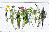 Narcissus, ranunculus, tulips, viburnum, hellebore and rosemary