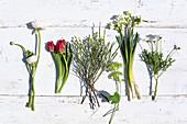 Ranunculus, tulips, viburnum, narcissus and ox-eye daisies
