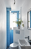 Blue-tiled end wall in small, narrow bathroom