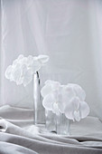 White flowering orchid branches in glass vases on gathered fabric