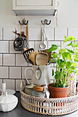 Kitchen utensils and potted herbs on tray