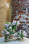 Flowering lilac in glass jars on terrace table in courtyard