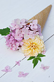 Hydrangea and rose in ice cream cone