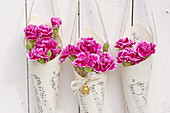 Carnations in paper cone bags