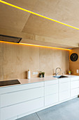 White kitchen counter in kitchen with plywood wall and ceiling