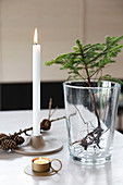 Arrangement of larch sapling in glass, candle and larch cones on table