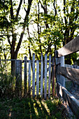 Weathered gate and wire-mesh fence in garden