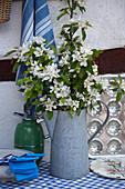 Blühende Obstbaumzweige in einer alten Kanne aus Metall