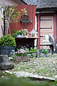 Flowers, plants and vintage accessories in courtyard outside red barn door