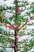 Homemade garland made of masking tape on a larch