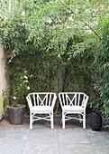 Two white chairs on an overgrown terrace