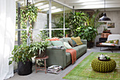 Conservatory with green plants, sofa, and green rug