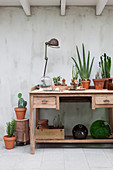 Wooden table with house plants, vintage lamp and balloon bottles