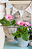 Pink gerbera daisies in metal bucket and basket in front of bunting