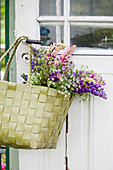 Bouquet of lupins in shopping basket hung from garden door handle