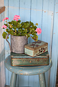 Pink-flowering geranium in metal pot on top of tin