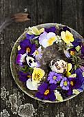 Blumenkranz aus Primeln, Stiefmütterchen und Anemonen auf rustikalem Teller