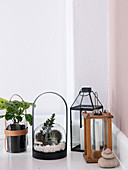 Lanterns, terrarium with glass ball and handle