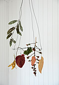 Hanging wreath with pressed leaves, twigs, and dried berries