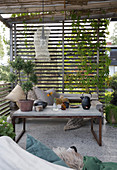 A coffee table on a terrace with plants