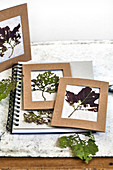 DIY pictures made with dried autumn leaves