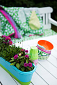 Flower box, cups and colourful bowls on garden table