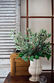 Artificial olive branches and ivy in stone urn in front of shutter
